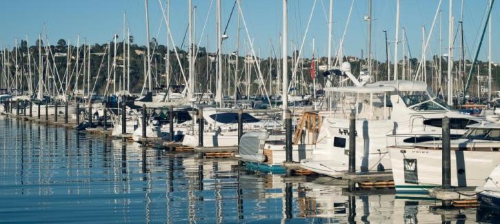 Sailboats docked on a sunny day at the Sausalito Yacht Harbor.