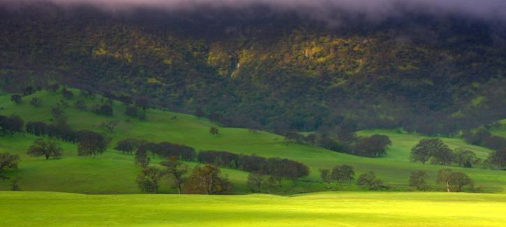 Scenic image from East Bay Regional Park District; Round Valley, Black Diamond, Morgan Territory or Brushy Peak. The sun pokes through the clouds and reflects off of the lime-green hills.